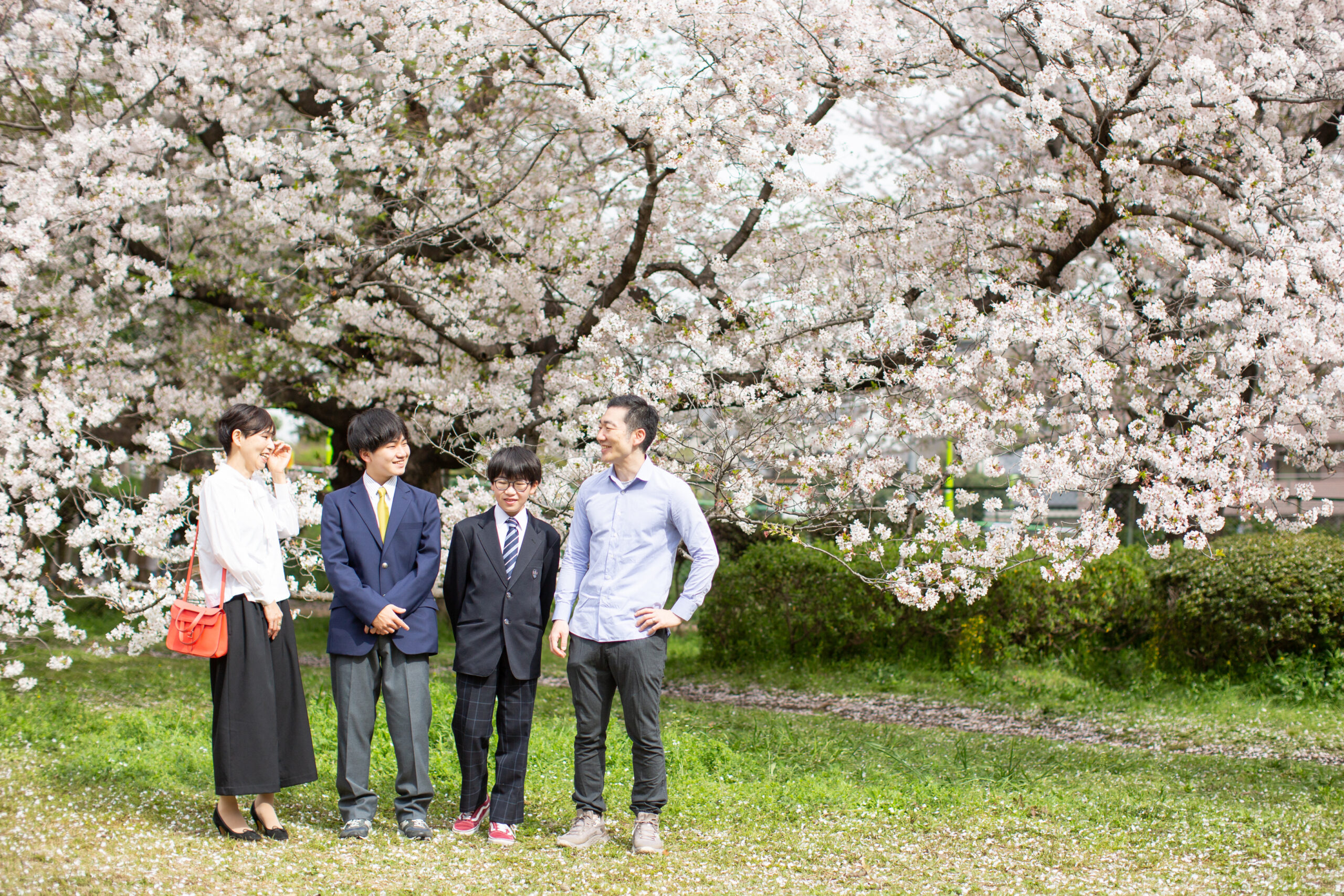 桜と歩く記念写真-M1